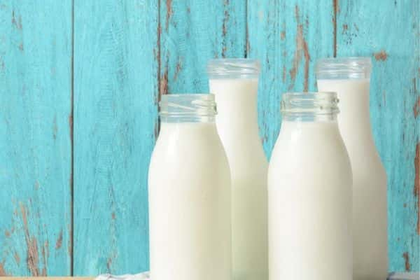 dairy products are one of the foods that cause pimples and oily skin