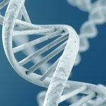 is acne genetically inherited