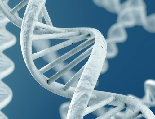 Genetics And Acne: Is Acne Genetically Inherited?
