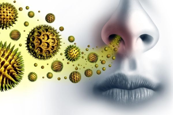 can seasonal allergies cause acne